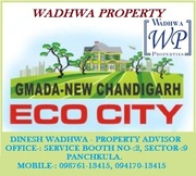 ECO CITY  PLOTS IN MULLANPUR