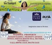 DLF Hyde Park Estate Plots New Chandigarh