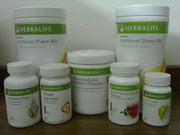 Herbalife Distributor Chandigarh Panchkula Mohali