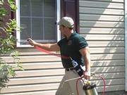 Pest Control Services @09711901086