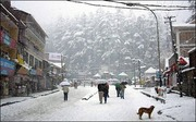 Shimla Manali Packages