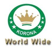 KoronaWebWorld is a Professional Website Design Company in Moga