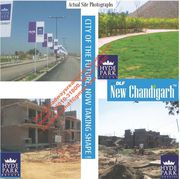 DLF 350SYD Plot Hyde Park at New Chandigarh Mullanpur