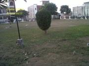 Shivalik Possessionable Plot at Shivalik City Sector 127,  Mohali