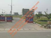 Fresh Booking 192-Syd Plots at TDI Sector 110,  Mohali with Subvention