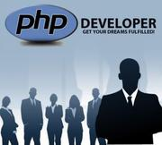 Requirements urgently sr php developer in pacnhkula