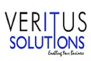 Veritus Solutions - Best Web Design Company