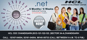 Six weeks and months Industrial Training in .Net