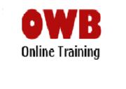 Best Abinitio online training in hyderabad