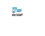 SAP BW Webirich 4.0 Online training  in chandigarh