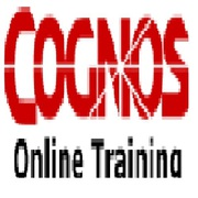Cognos 10 Online Software Training Institute In Hyderabad  India
