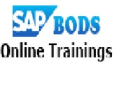 SAP BODS Job Assurance Online Training Institute In Chandigarh