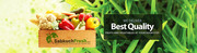 Organic Vegetables and Fruits Delivered to Your Home