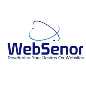 WebSenor InfoTech Website Development  - Software Development