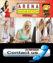 Arena 3D Animation Institute in Mohali,  Punjab