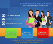 Six Months/Six weeks Industrial Training in Smartwinz