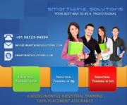 Six Months/Six weeks Industrial Training in Smartwinz