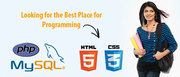 PHP/MySQL - Industrial Training
