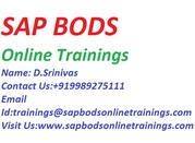 Crucial SAP BODS Training