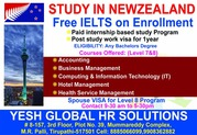 Paid internship based study in Newzealand