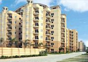 Luxury Flats near Chandigarh