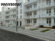 DLF Commercial SCO in New Chandigarh , Mullanpur