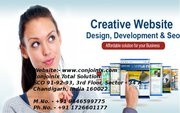 Web Development Company Chandigarh - Conjoinix