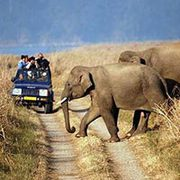 7.	Delhi-Sariska National Park Weekend Tour