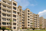 3 bhk Acme height sector126