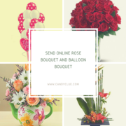 Send Cakes, Flower and Gifts to Chandigarh