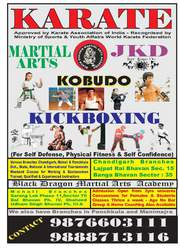 Learn karate kick boxing