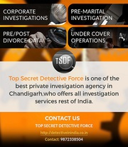 Detective agency in Chandigarh