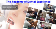 Dentistry Courses for General Dentist The Academy of Dental Excellence
