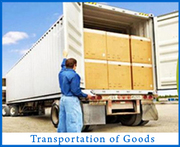 Reliable Packers & Movers in Noida & Delhi 9891868220