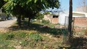 200 Sq Yard Plot in Mohali Sector 80