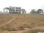 250 Sq Yard Plot Sector 117 TDi CIty