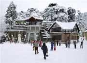 Muskan Holidays Shimla Packages cheap flights