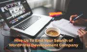 Looking for Wordpress Development Company