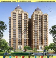 3 Bhk In Ambika Florence Park New Chandigarh 95O1O318OO