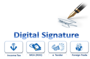 PERK SOLUTIONS DIGITAL SIGNATURE CERTIFICATE