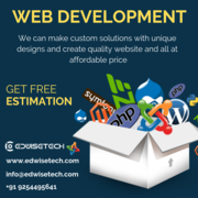 Get the best web development services with Edwise Tech