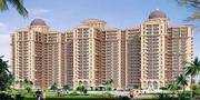 new chandigarh ambika florence park