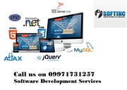 Best Software Development Company in Chandigarh,  India