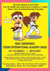 TAEKWONDO MARTIAL ARTS CLASSES IN CHANDIGARH,  PERSONAL CLASSES