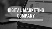 Professional Digital Marketing Company in Chandigarh
