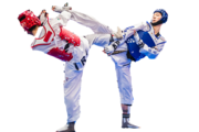 ONLINE TAEKWONDO CLASSES CHANDIAGRH
